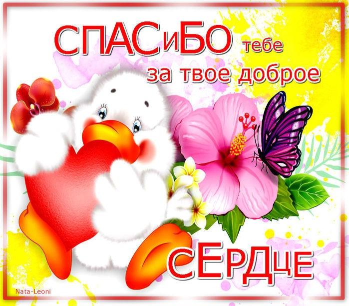 Картинки, открытка у тебя доброе сердце